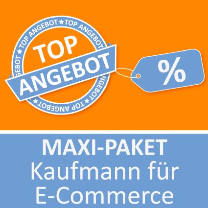 Maxi-Paket Kaufmann für E-Commerce - Lernkarten